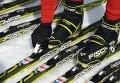 Лыжные гонки. Спринт. Тренировки. Архивное фото.
