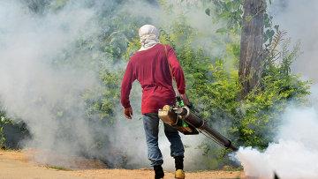 Профилактика лихорадки денге. Архивное фото