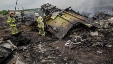 Крушение малайзийского Boeing на Украине