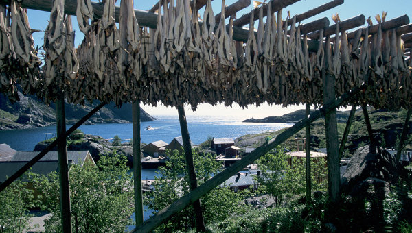 Вид на рыбацкий поселок Намсос в Норвегии. Архивное фото.