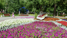 Осмотр нового парка в районе Зюзино