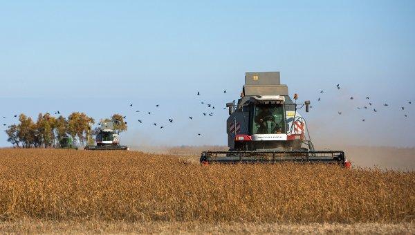 Комбайн убирает урожай сои на полях. Архивное фото