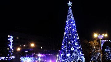 Местные жители на торжественном открытии главной елки Донецкой народной республики (ДНР) на площади имени Ленина в Донецке