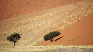 Страны мира. Намибия. Архивное фото
