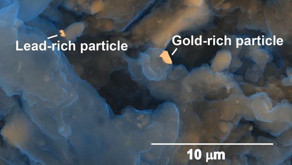 Частицы золота и свинца в фрагменте переработанных твердых нечистот