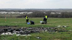 Эксперты из Голландии и Малазии посетили место крушения Боинга в Донецкой области. Архивное фото