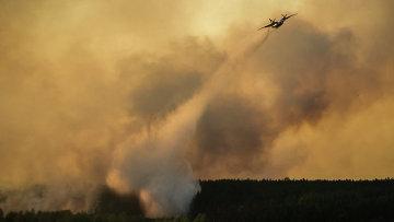 Тушение пожара в Чернобыльской пуще