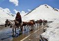 Кочевники в горах Кашмира