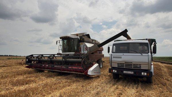 РФ начнет закупочную интервенцию зерна сКрыма