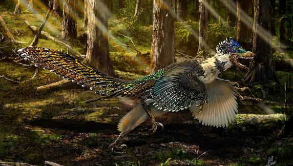 В Китае нашли двухметрового пернатого динозавра