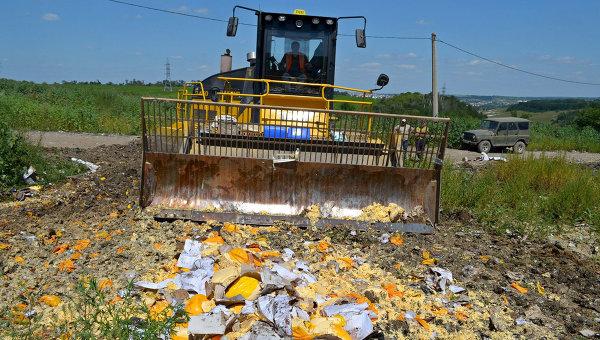 Руководство Российской Федерации продлило срок уничтожения санкционной еды