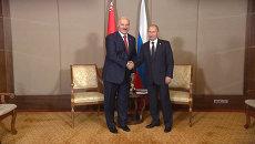 Путин поздравил Лукашенко с победой на выборах и пожелал эффективной работы