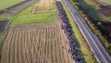 Миранты на хорватско-словенской границе. Архивное фото