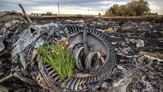 Сбор тел погибших на месте крушения малайзийского лайнера Boeing 777. Архивное фото