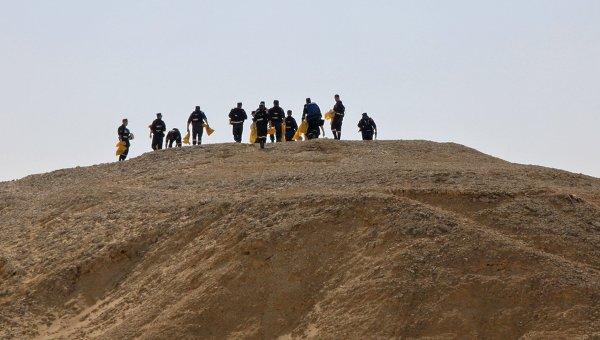 СКобсудил сегипетскими коллегами расследование теракта наборту A321