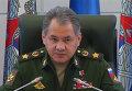 Шойгу раскрыл детали операции по спасению штурмана сбитого в Сирии Су-24