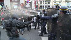 Полиция слезоточивым газом разогнала митингующих в защиту экологии в Париже