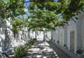 Виноградный дворик в караимских кенассах в Евпатриии, Крым