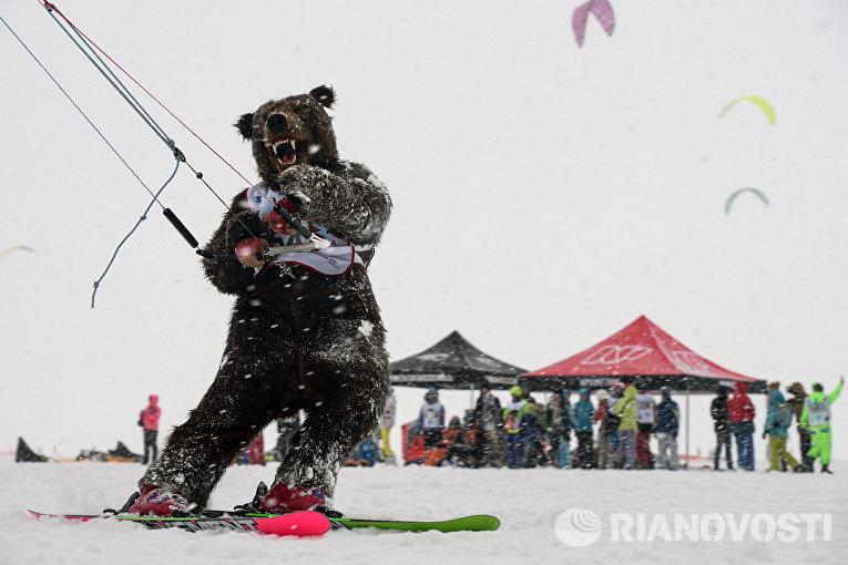 Кубок Сибири по сноукайтингу - 2015