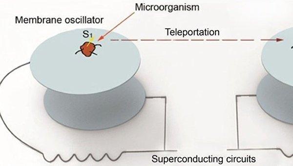 Схема устройства, телепортировавшего память бактерий