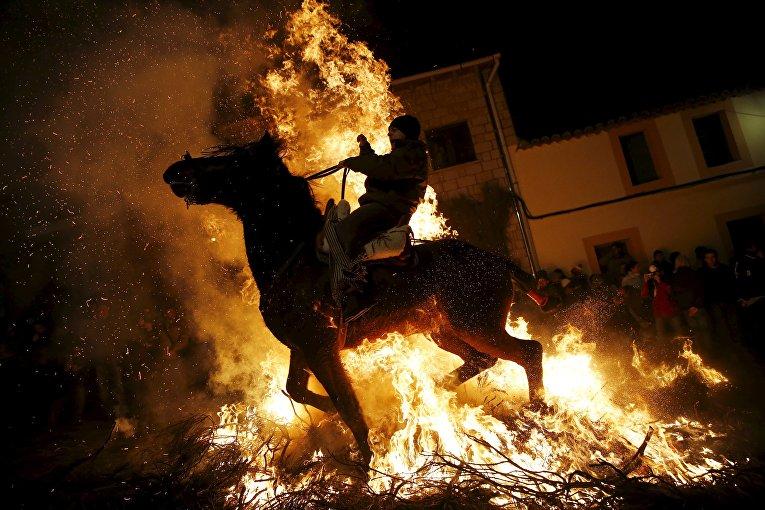 Человек едет на лошади через огонь во время ежегодного религиозного праздника Luminarias в канун дня Святого Антония