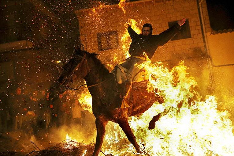 Мужчина скачет на лошади через костер во время фестиваля в честь Святого Антония Las Luminarias в селении Сан-Бартоломе де Пинарес, Испания