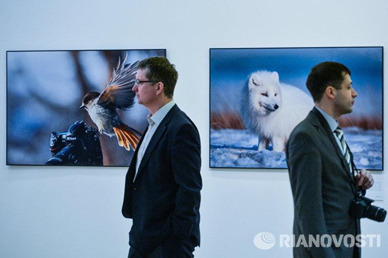 Посетители на фотовыставке, которая открылась в рамках III Общероссийского фестиваля природы Первозданная Россия в Центральном Доме Художника в Москве