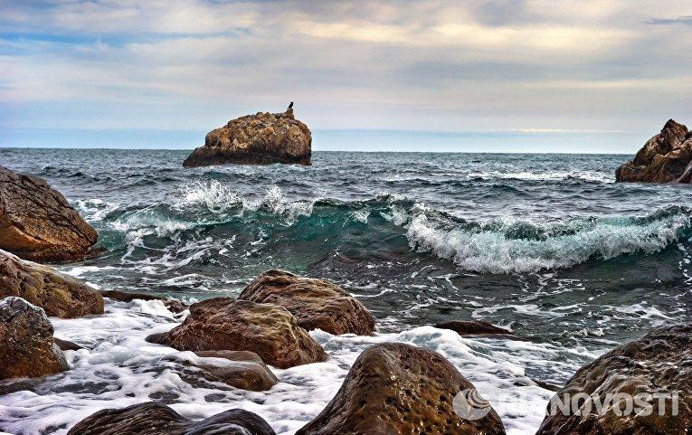 Камни на берегу Черного моря в поселке Ай-Даниль в Крыму