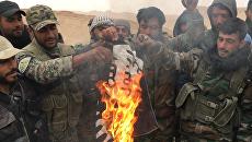 Сирийские солдаты сжигают флаг террористической группировки Исламское государство, архивное фото