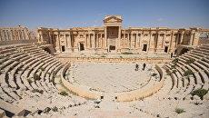 Древний амфитеатр Пальмиры. Архивное фото