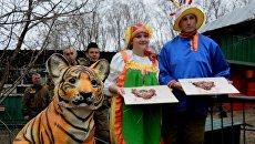Работники сафари-парка идут поздравлять Амура и Тайгу с днем рождения
