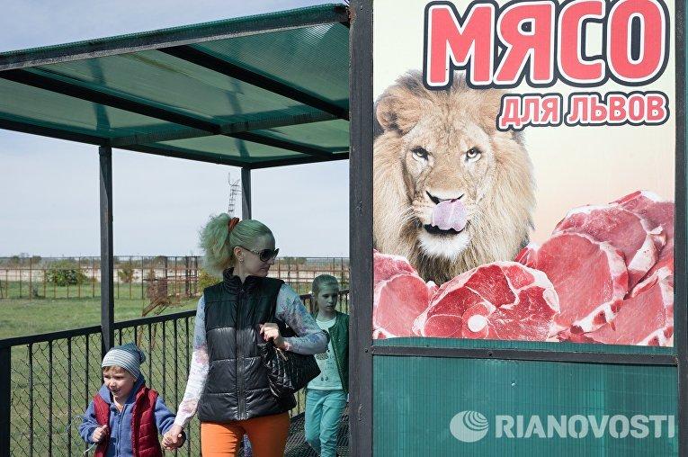 Посетители в сафари-парке Тайган