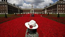 Ежегодное цветочное шоу в лондонском районе Челси