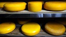 Производство сыра. Архивное фото