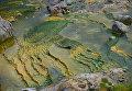 Сток гейзера Великан в Долине Гейзеров в Кроноцком государственном природном биосферном заповеднике