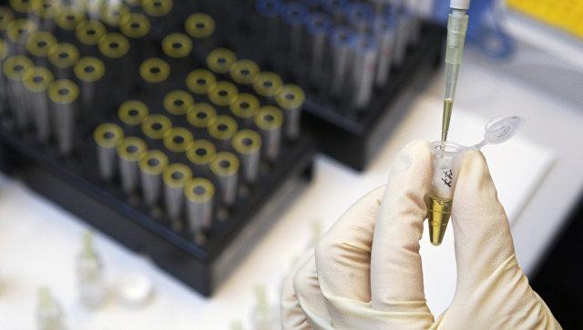 Процедура определения гормона роста в сыворотке крови в лаборатории анализа пептидного допинга. Архивное фото