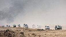Силы безопасности Ирака патрулируют нефтяные месторождения в Басре. 25 июля 2016 года