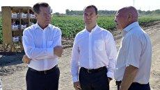 Дмитрий Медведев во время ознакомления с ходом уборки урожая овощных культур в Астраханской области. 2 сентября 2016