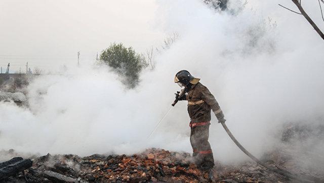 В Подмосковье сократилось количество лесных пожаров