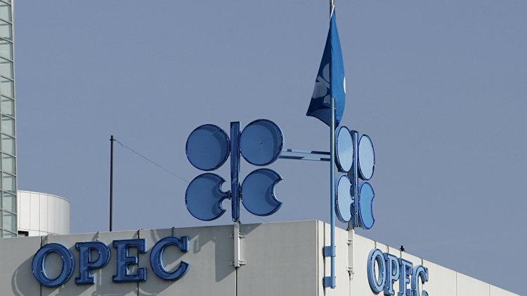 The Telegraph: ОПЕК умоляет создать альянс с Россией