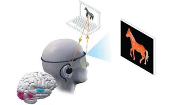 Выйти из сумрака: как звук возвращает зрение
