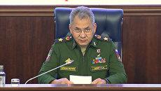 Шойгу о результатах операции ВКС РФ в Сирии за год