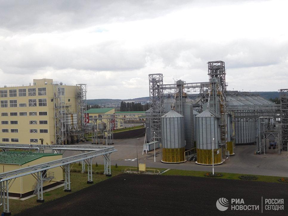 Семенной завод Краснояружской зерновой компании