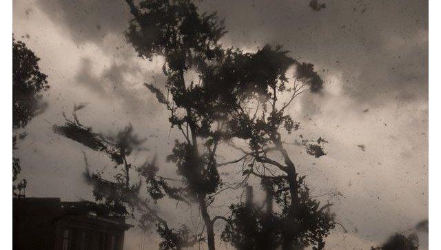 Сильный ветер. Архивное фото