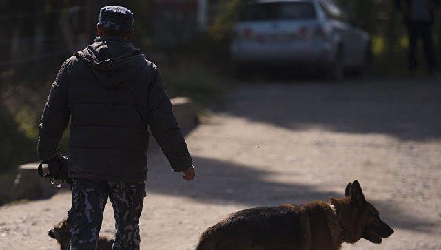 ВКиргизии устранили Госслужбу по мониторингу заоборотом наркотиков