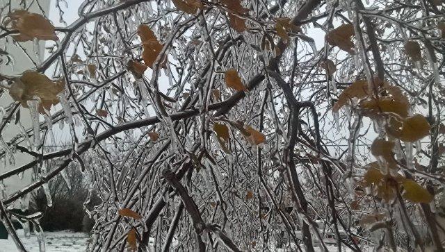 Электрички остановились научастках Белорусского иКиевского направления МЖД