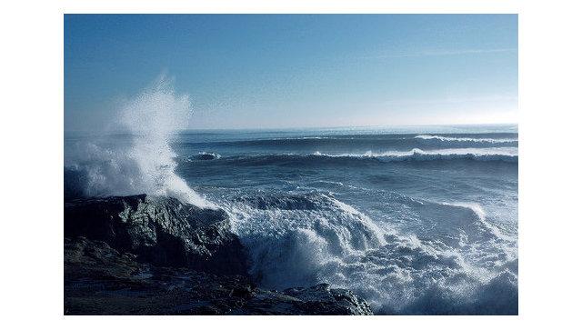 В новейшей Зеландии перевернулось рыбацкое судно: погибли семь человек