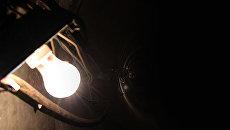 ООН просит всех выключить свет в рамках акции Час Земли