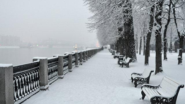 Пешеходная зона славками иклумбами соединит Парк Горького сЛенинским проспектом