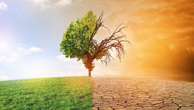 Ученые спрогнозировали сроки наступления «смертоносной жары» вСША